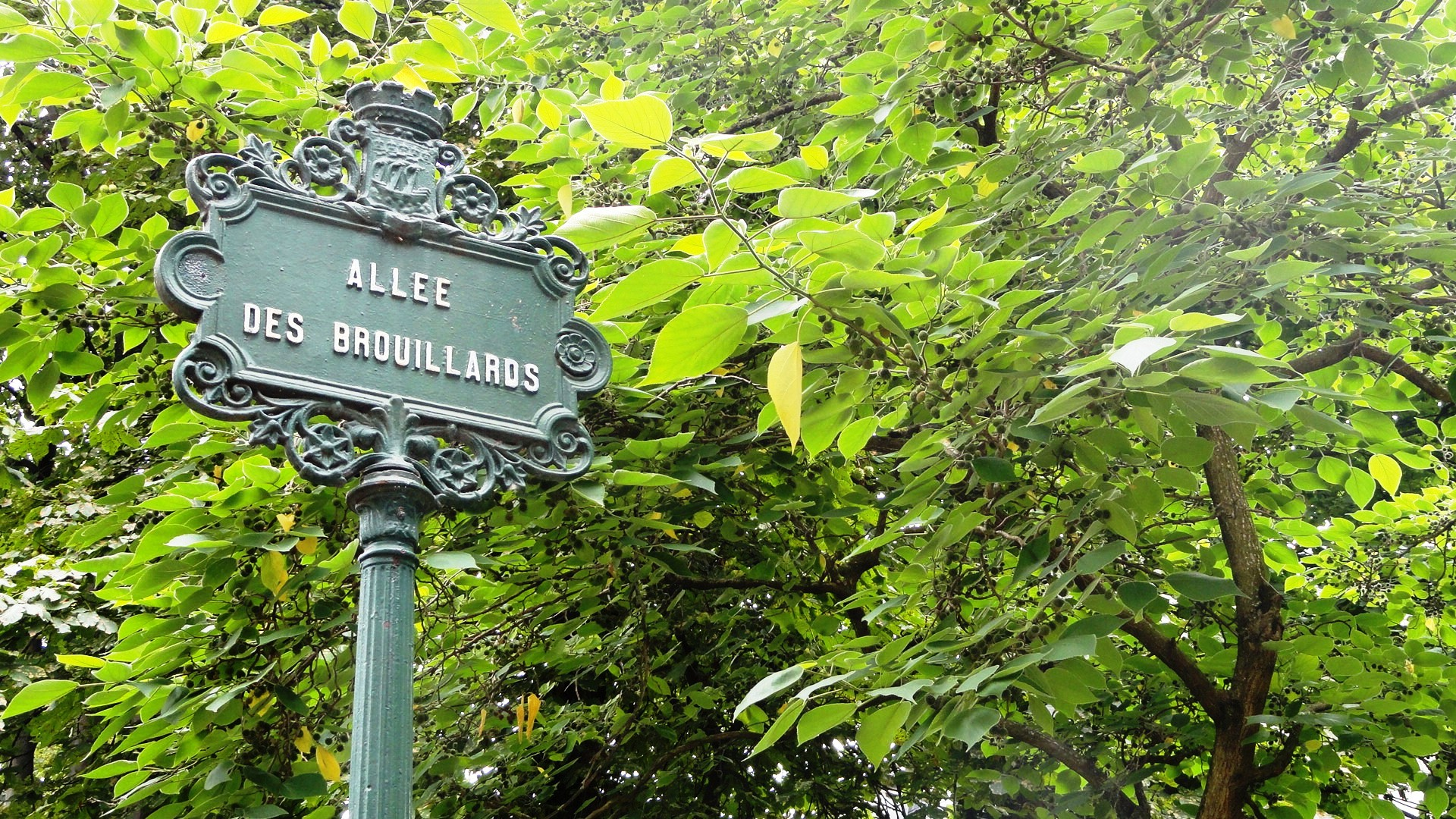 Montmartre - Allée des Brouillards