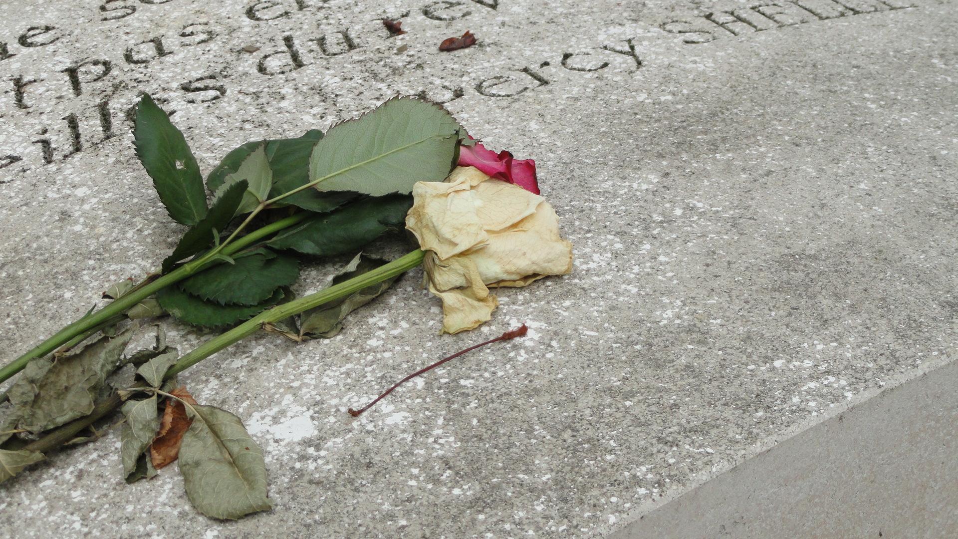 Le cimetière du Père Lachaise - Tombe de Marie Trintignant - Fleurs