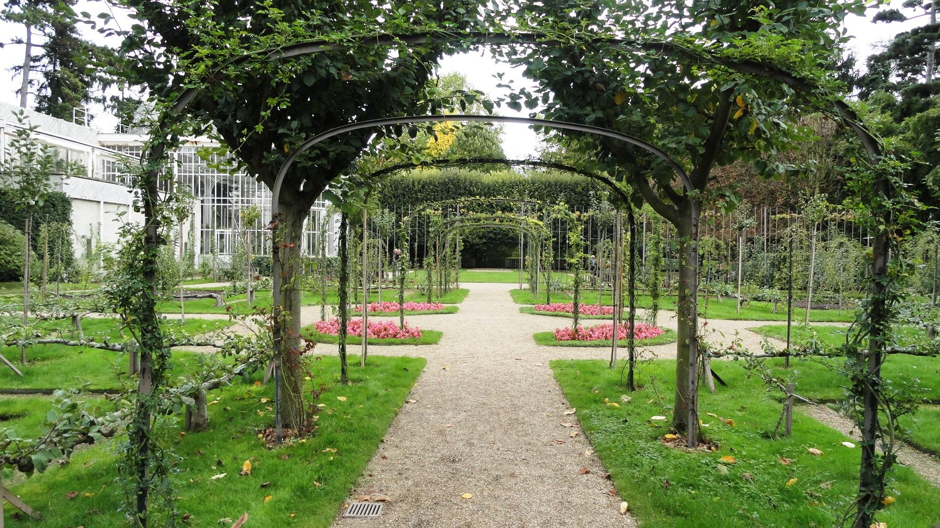 L 39 automne aux jardins albert kahn un petit pois sur dix for Jardin anglais albert kahn