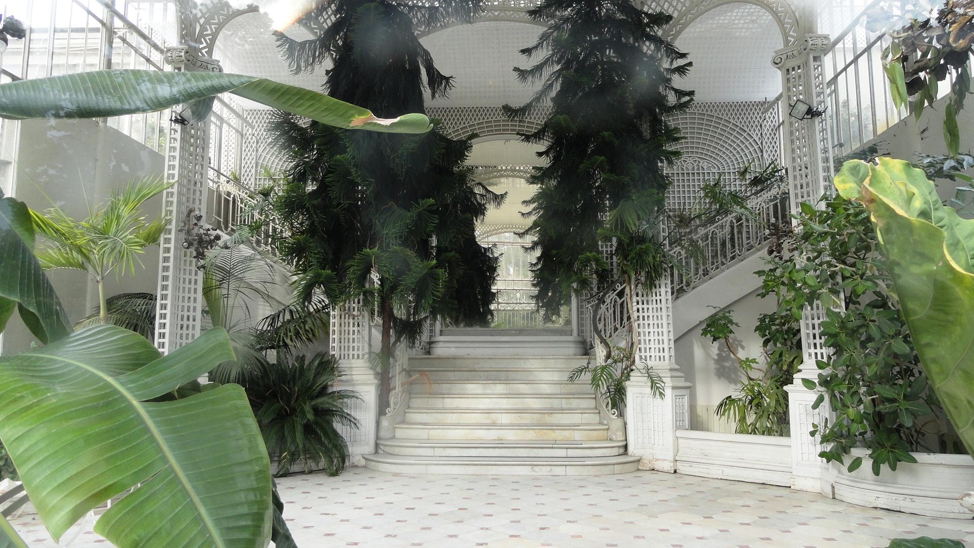 Jardins Albert Kahn - La serre du jardin français