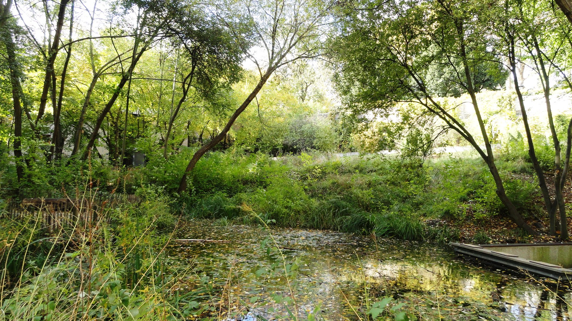 Balade dans le 20e autour de la rue de bagnolet un for Le jardin naturel lespinasse