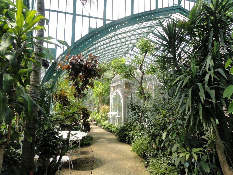 Le jardin des serres d 39 auteuil un coin de paradis for Les jardins de villa paris