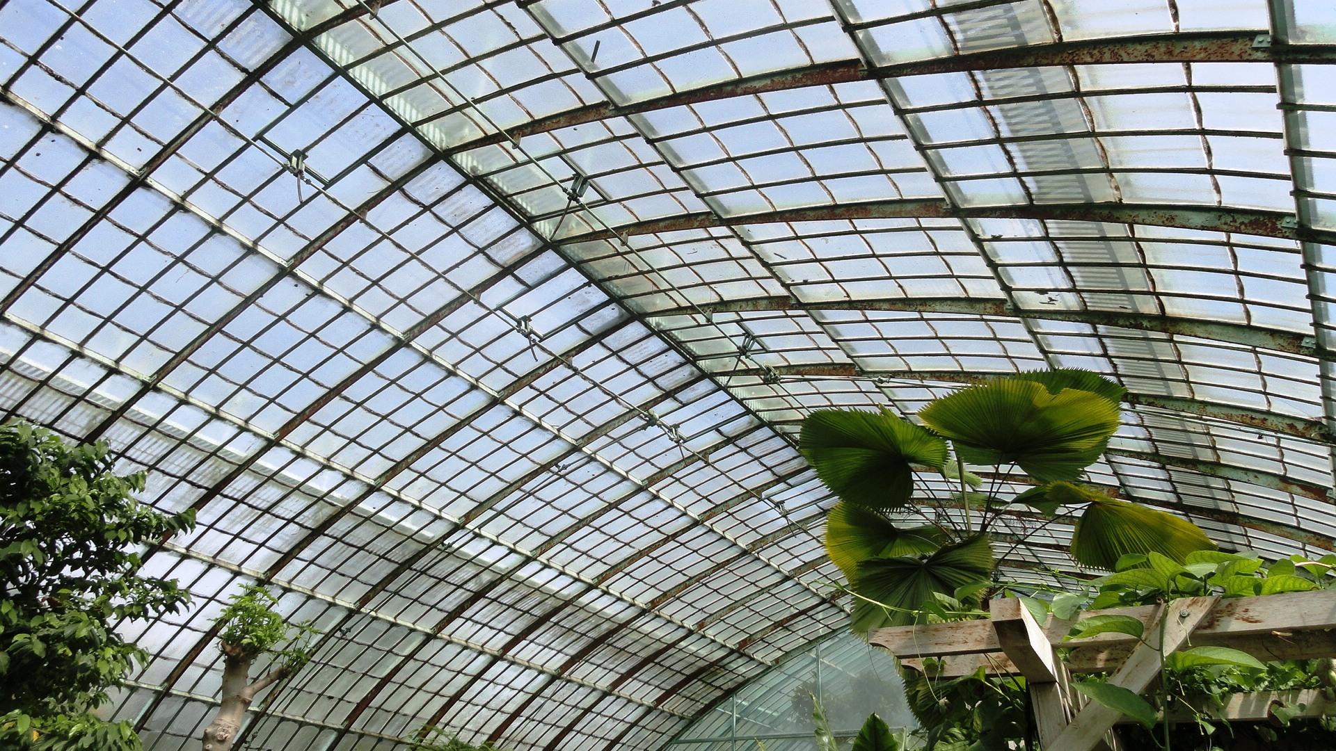 Jardin des Serres d'Auteuil, Paris 16e - Palmarium