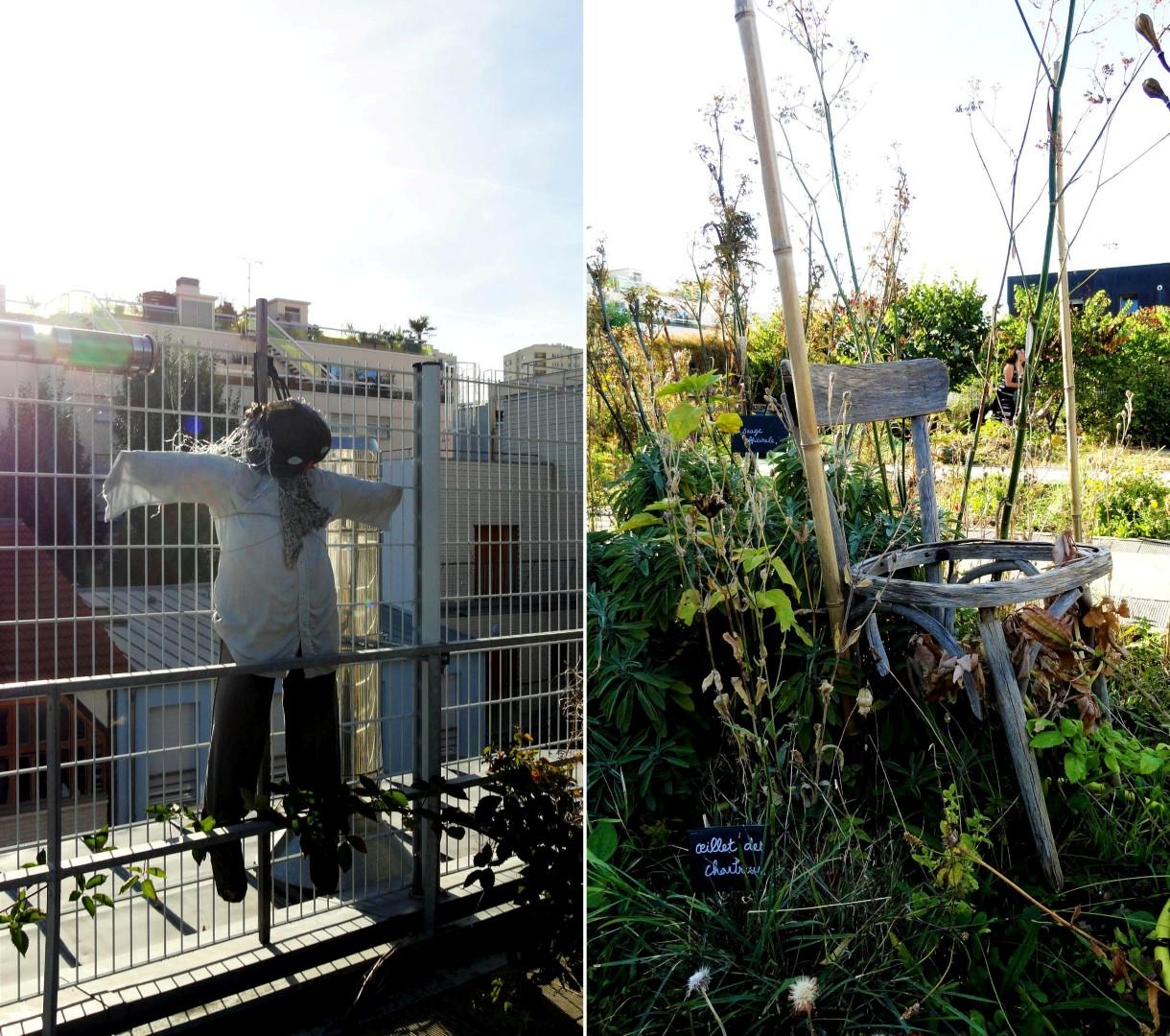 Jardin sur le Toit - Rue des Haies, Paris 20e