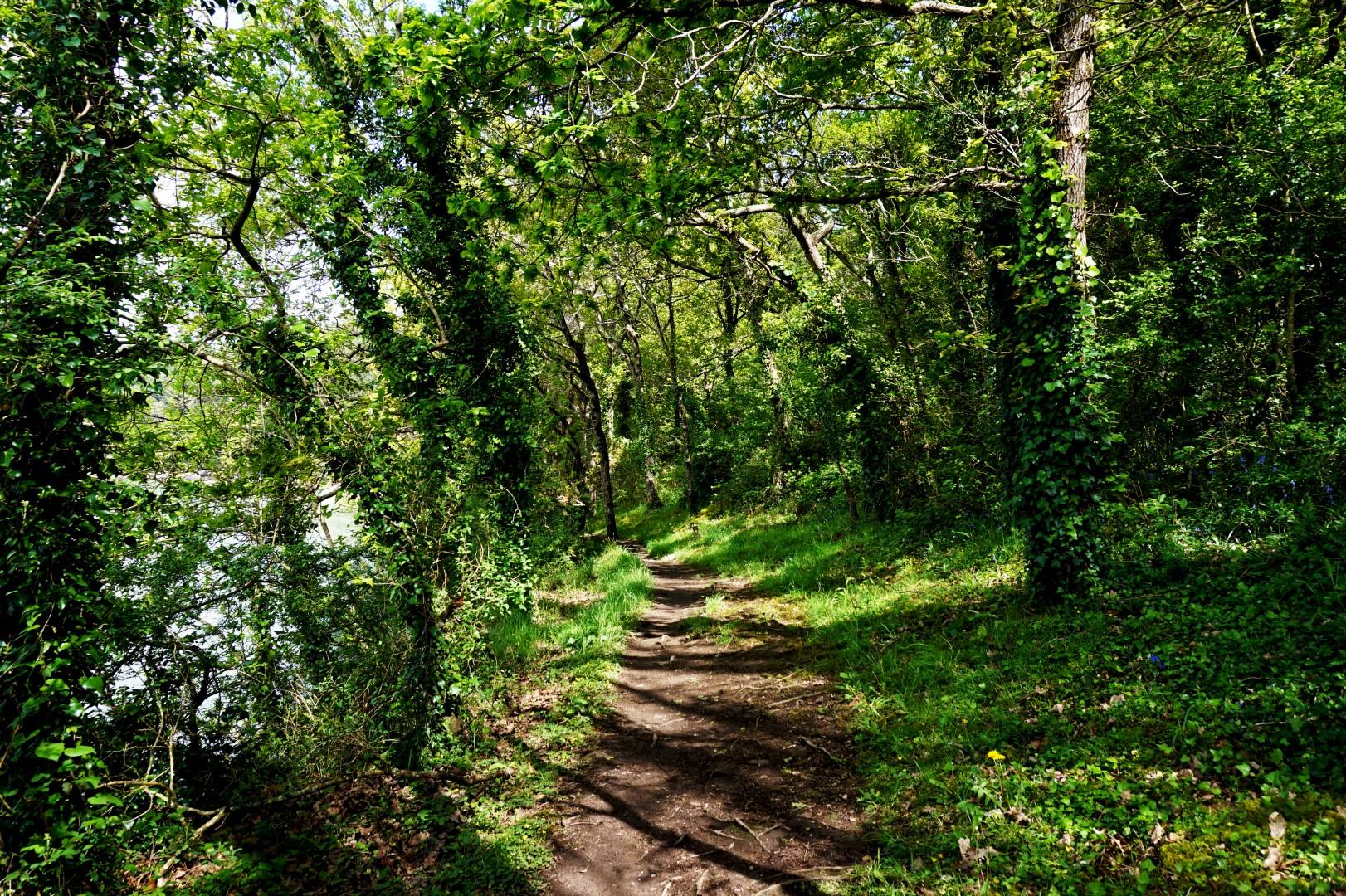 Vacances dans le Finistère Sud - Les chemins creux
