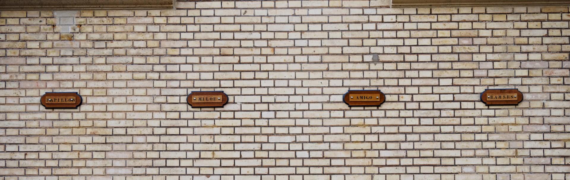 Garde Républicaine, Quartier des Célestins - Paris 4e