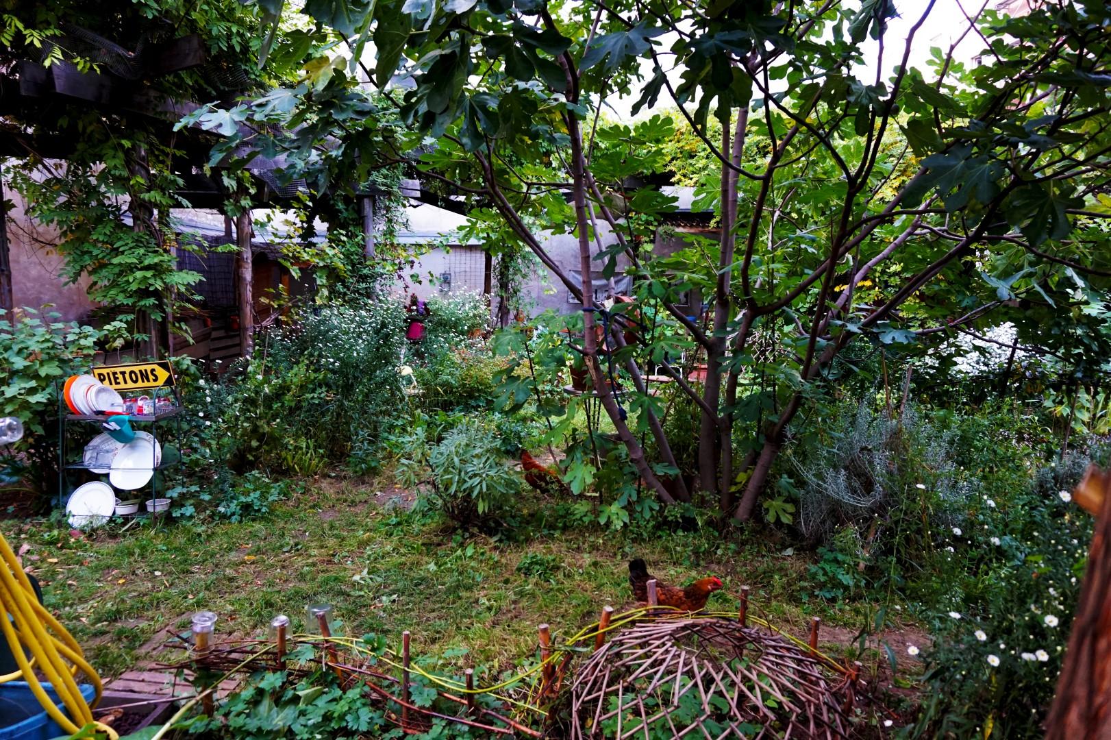 Balade dans le 19e et 20e - Jardin partagé