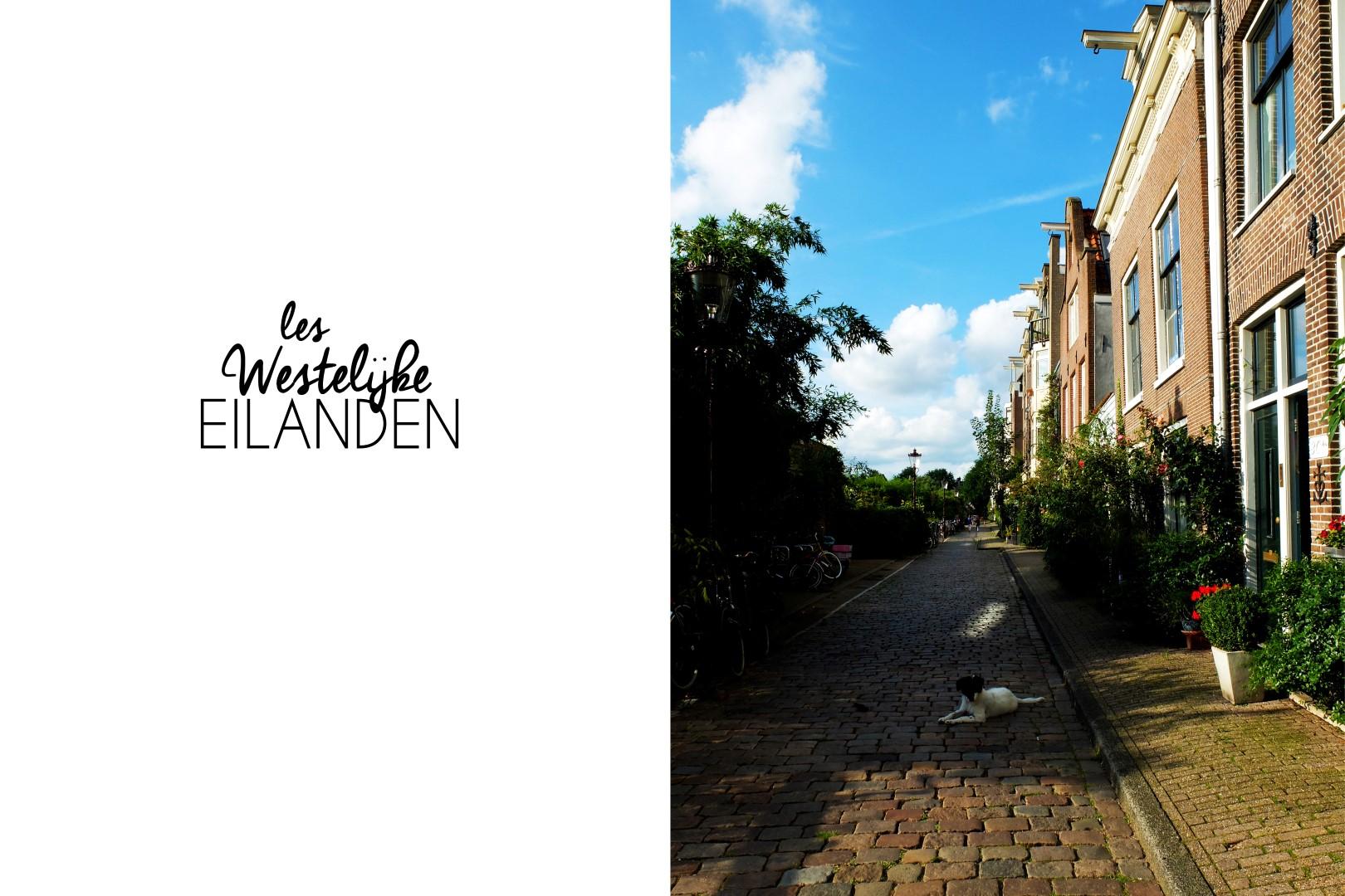 20160210_westilijke_eilanden (Large)