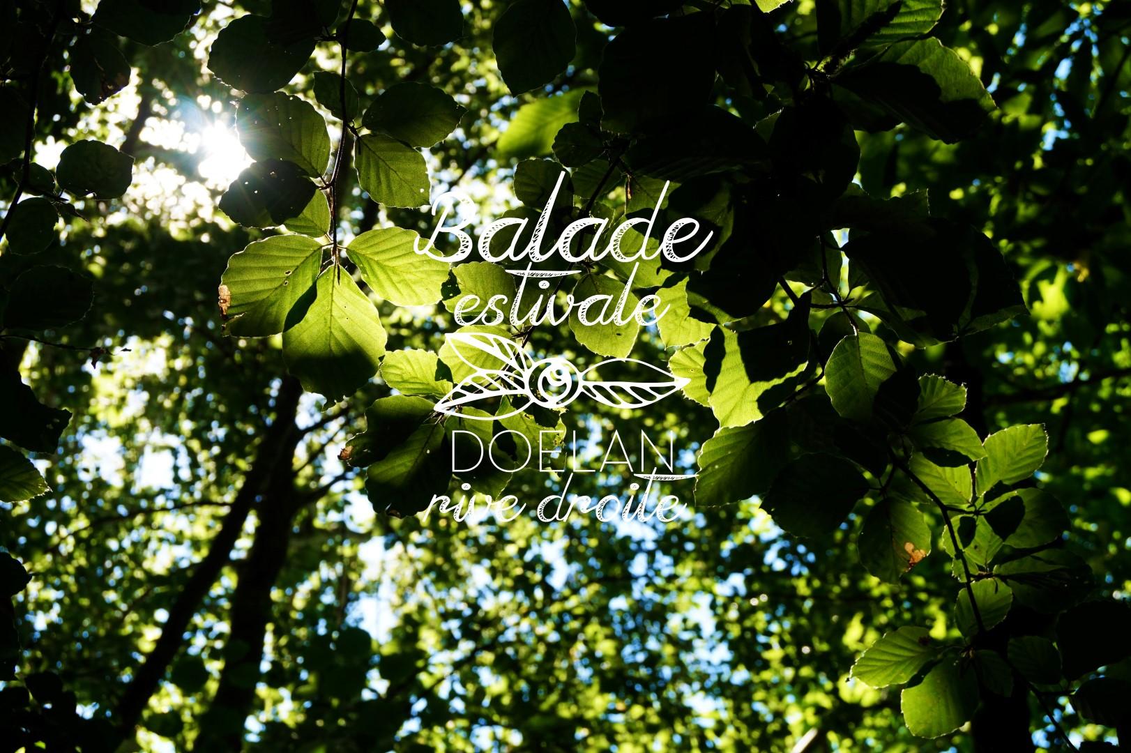 20160906_balade_estival_doelan (Large)
