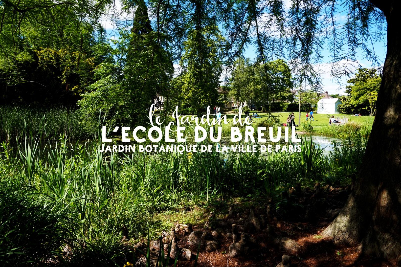 Le jardin de l 39 ecole du breuil un petit pois sur dix for Le jardin l experience