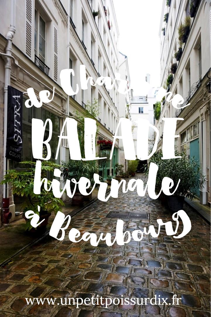 Balade hivernale dans Paris, entre Charonne et Beaubourg