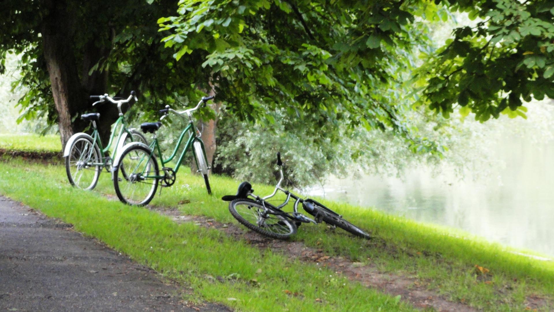 Bords de Marne - Vélos