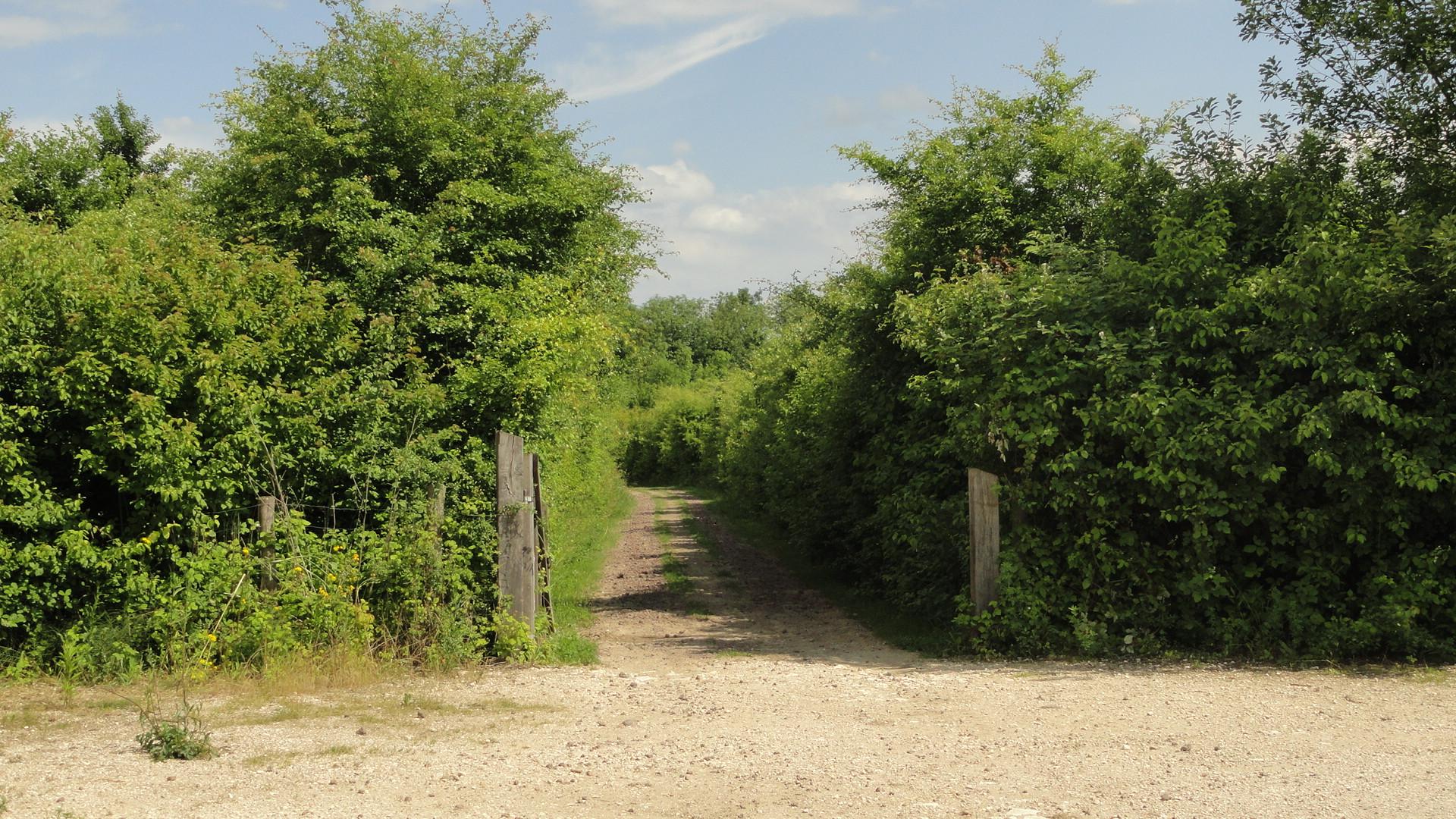 La Parc de la Haute Ile - Chemin