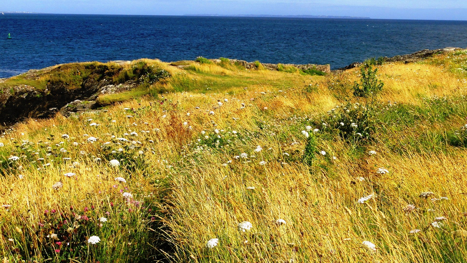 Côte bretonne - Entre Doëlan et Merrien, L'Ile de Groix au loin