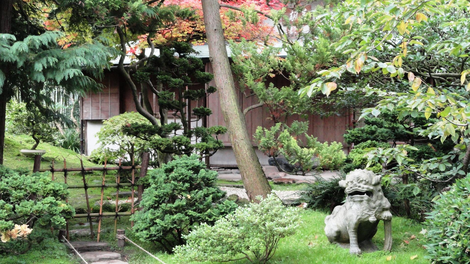 L 39 automne aux jardins albert kahn un petit pois sur dix for Achat jardin japonais