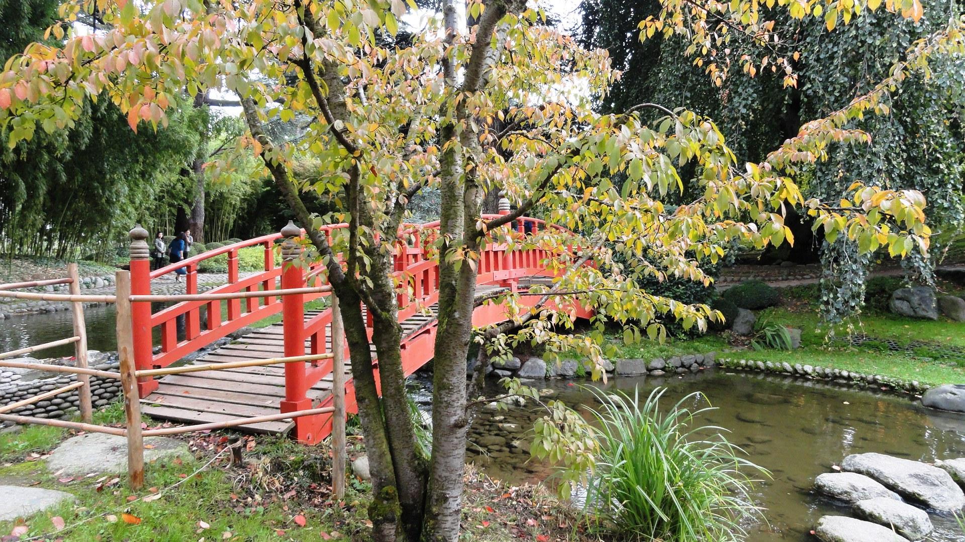 Jardins Albert Kahn - Jardin japonais moderne - Pont