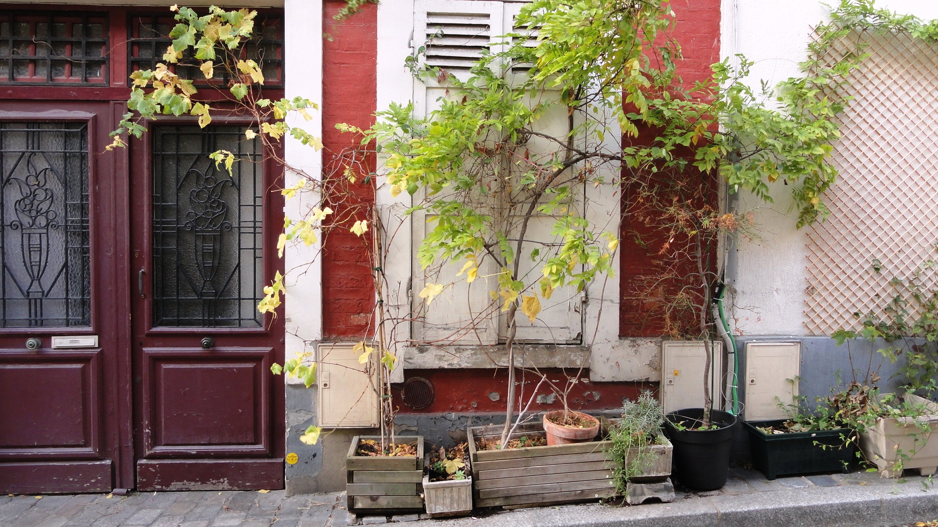 Rue Ligner, Paris 20e