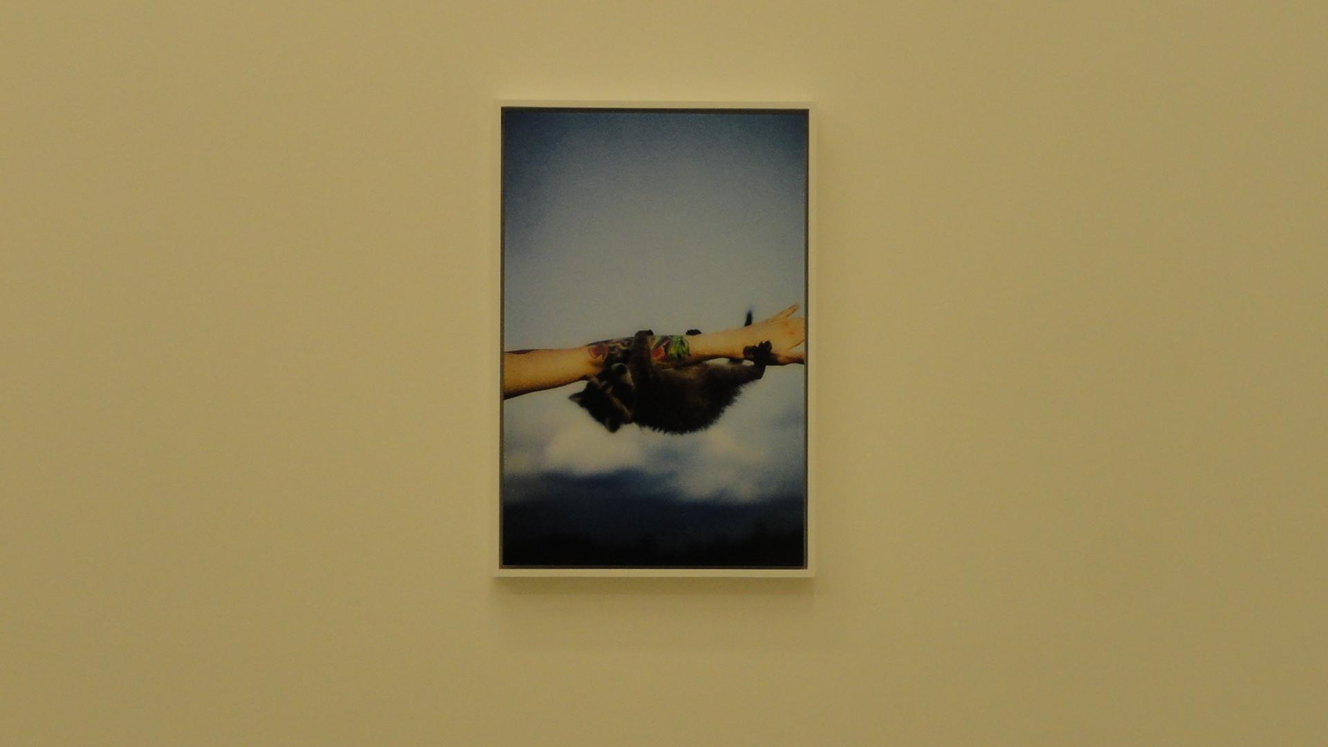 Galerie Perrotin - Ryan McGinley, Body Loud