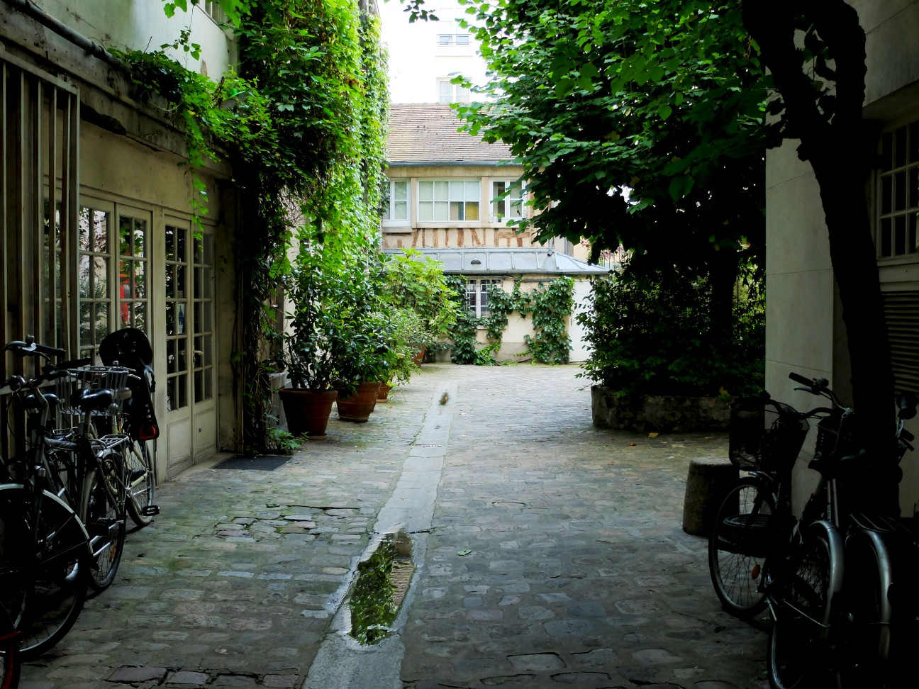 Balade dans le Marais - Rue de Jarente - Cour intérieure