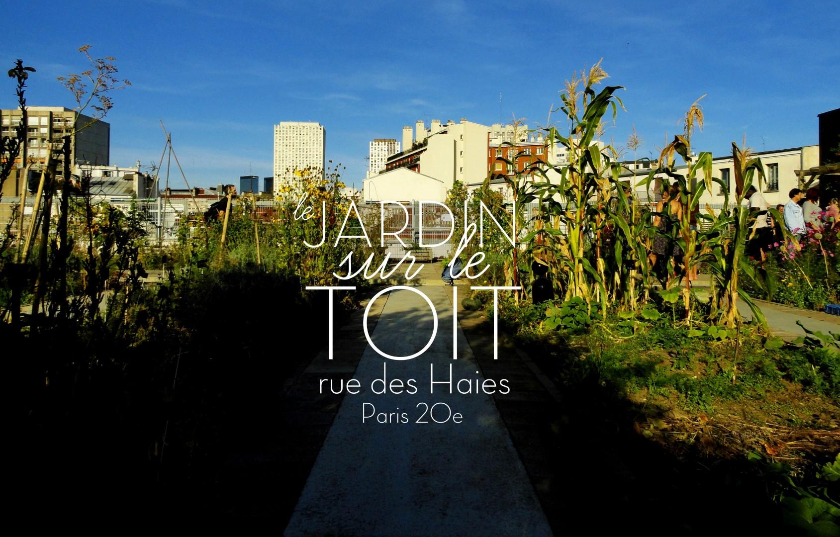 Le jardin sur le toit rue des haies paris 20e un for Le jardin 21 rue de la federation