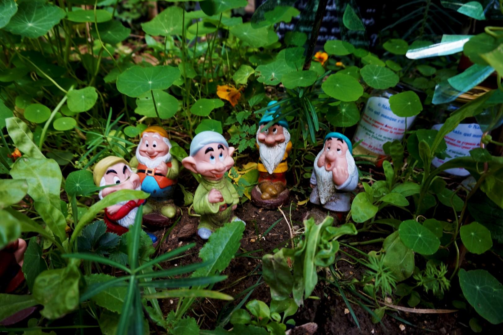 Fête des Jardins