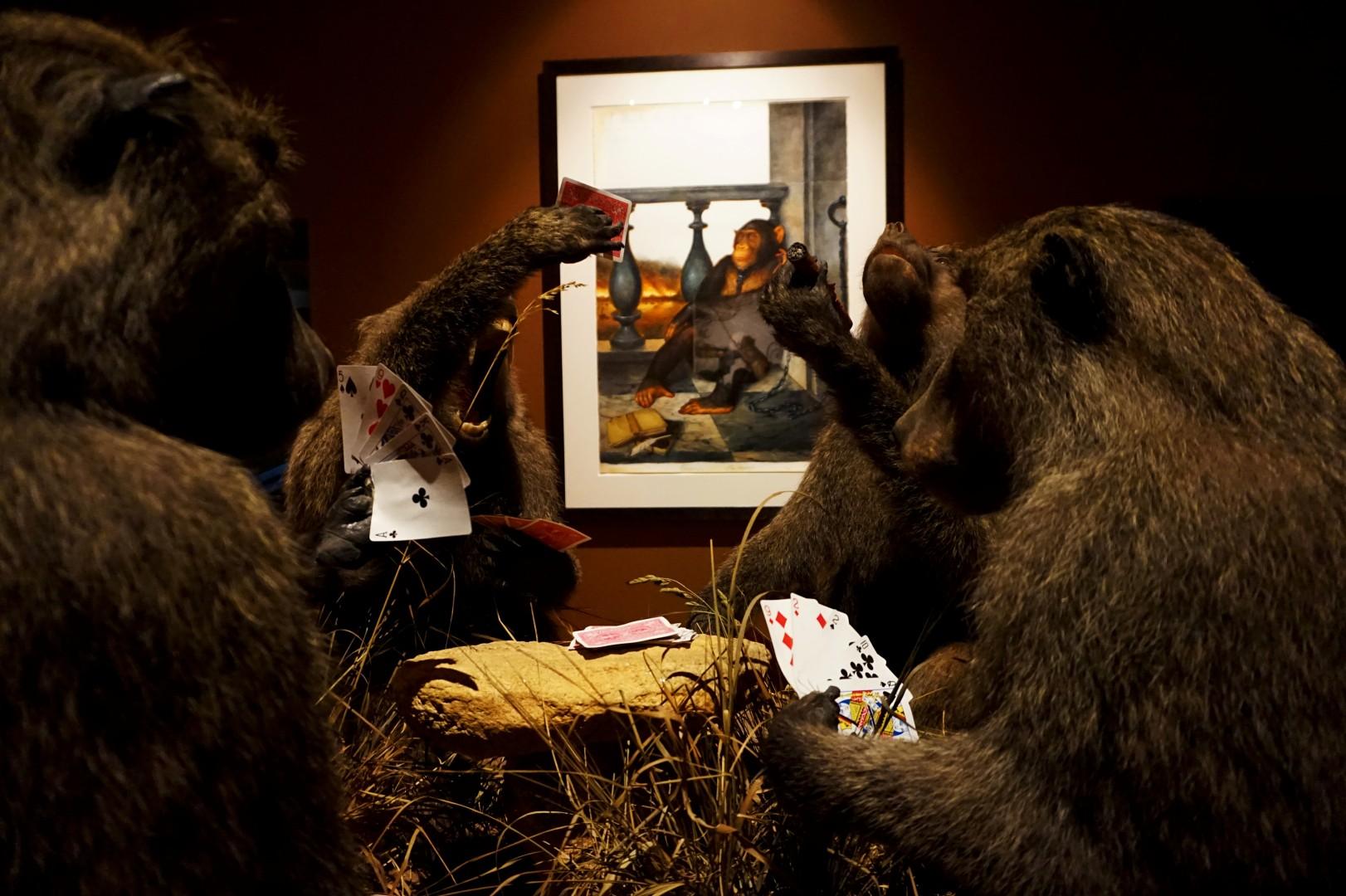Walton Ford - Musée de la Chasse et de la Nature