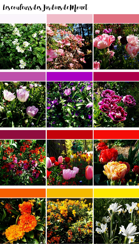 20160712_couleurs_jardins - Copie