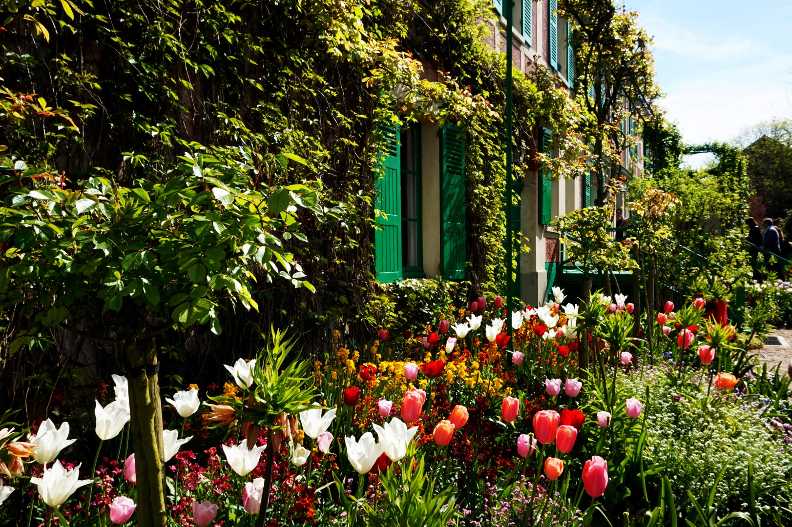 Balade dans les jardins de Monet - le Clos Normand