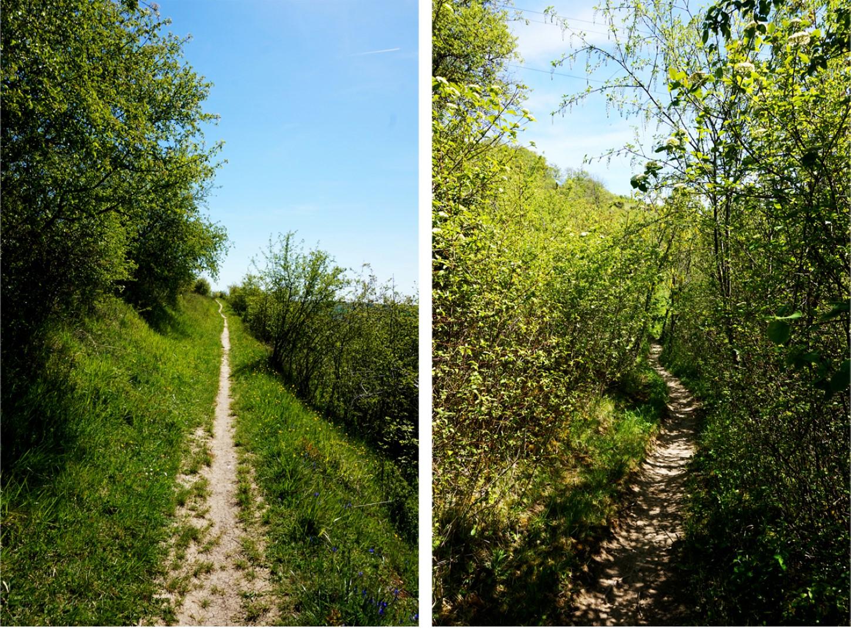 Balade dans les Coteaux, Giverny - sur les pas de Monet