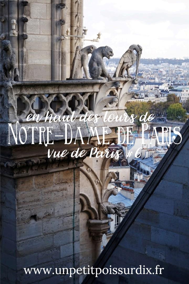 Vue de Paris - En haut des Tours de Notre Dame