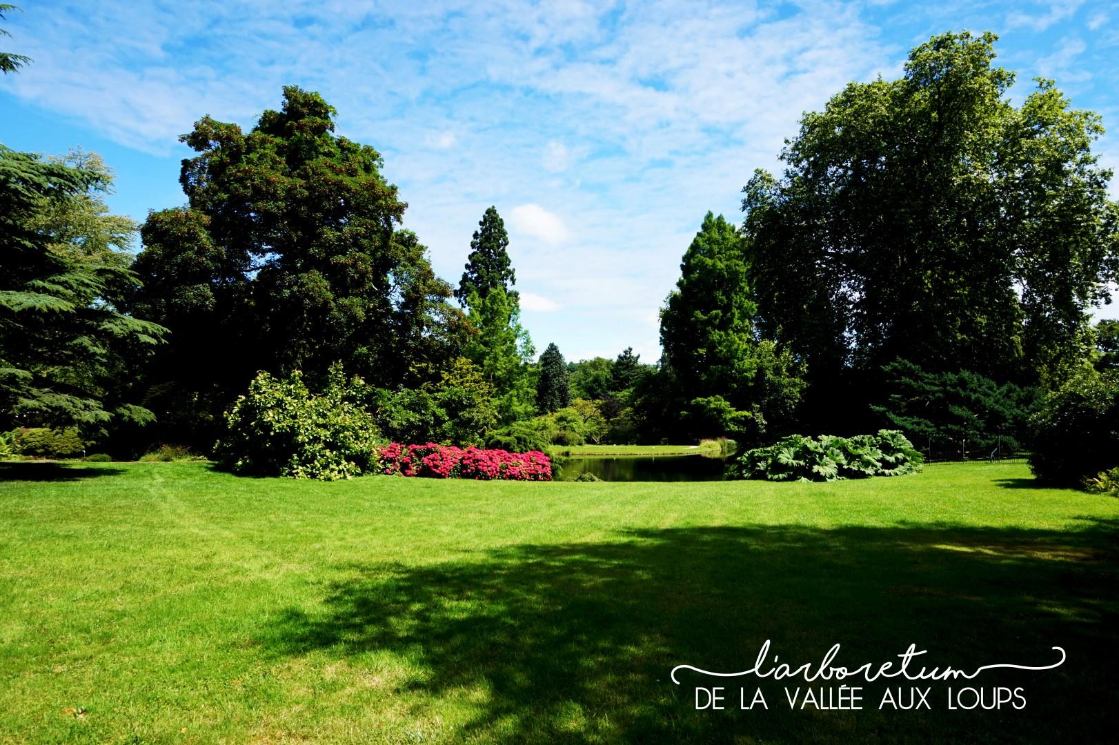 Arboretum - Parc de la Vallée aux Loups