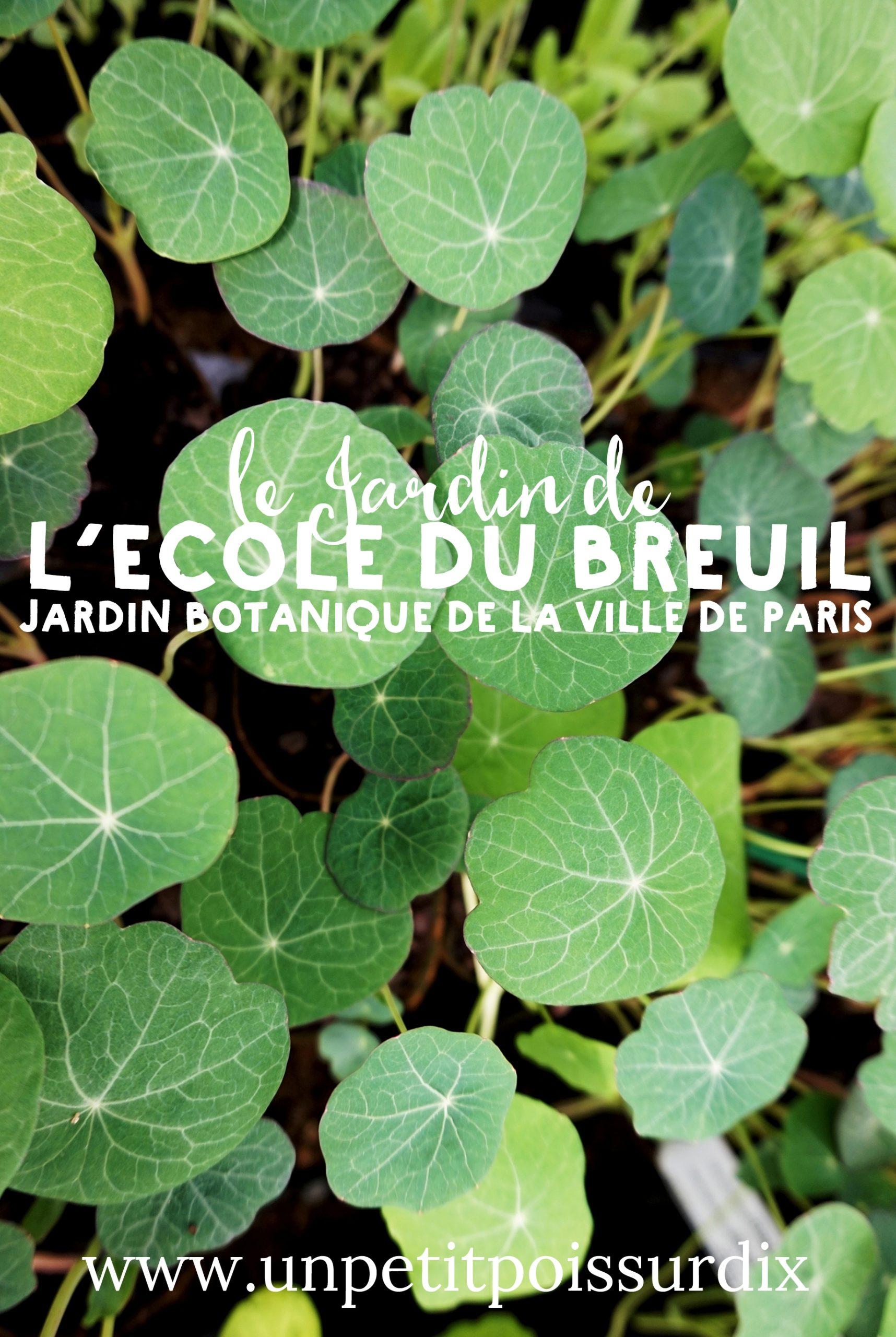 Découverte des jardins et des serres de l'école du Breuil - Paris 12e (Bois de Vincennes)