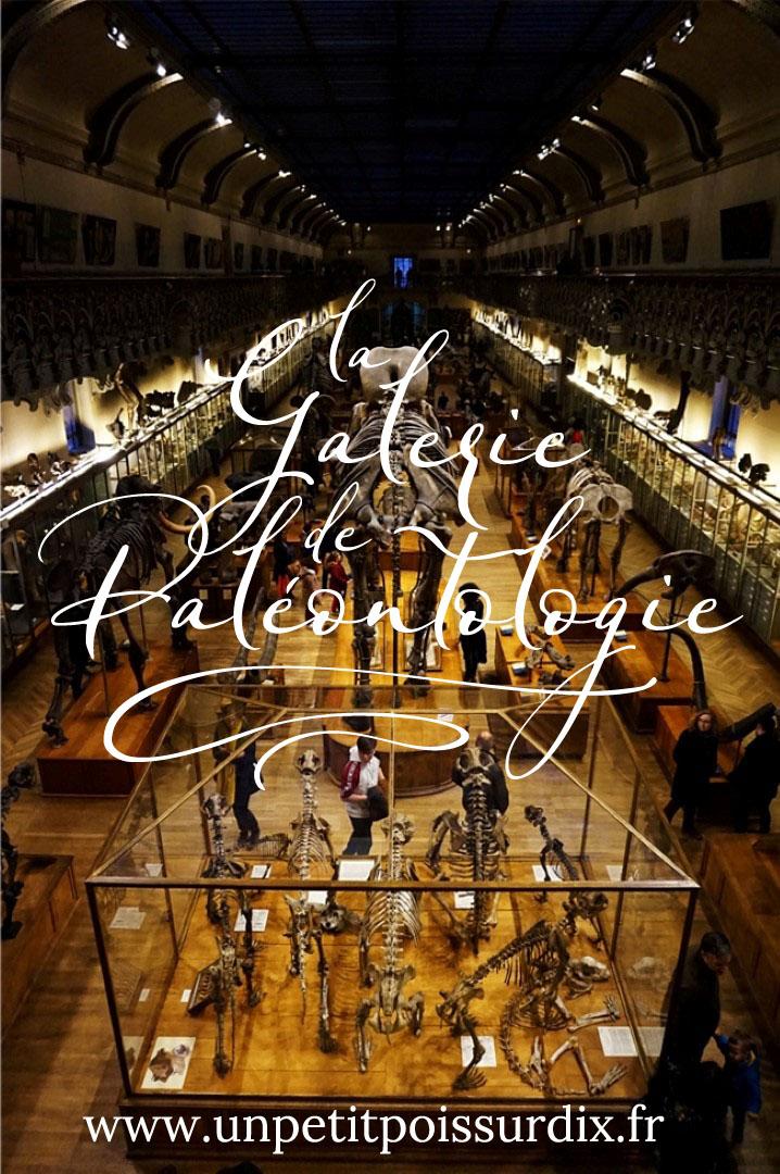 Visite de la Galerie de Paléontologie et d'Anatomie comparée - Paris 5e